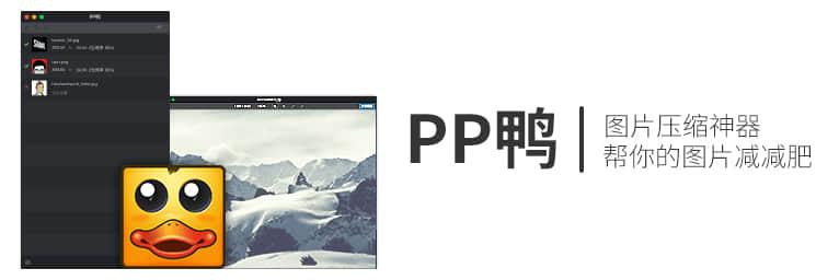 ppduck1
